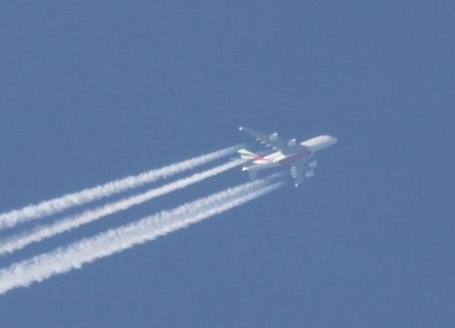 Fotobevis för skadliga flygutsläpp, chemtrails och konsekvenser på ägg